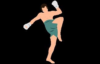 UFC Fighting Betting
