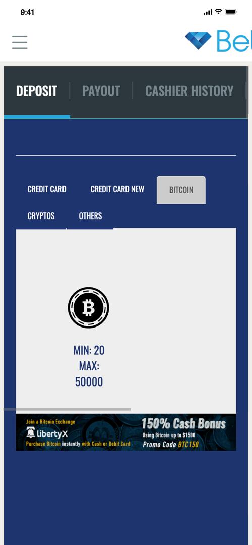 BetDSI Deposit Screen Two