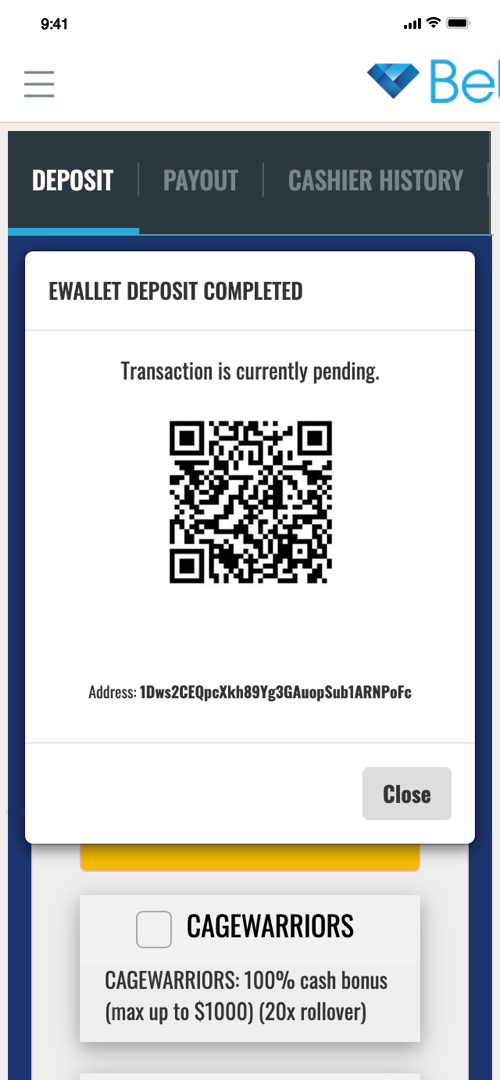 BetDSI Deposit Screen Four